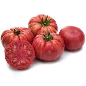 pomidor Cassarosa