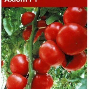 pomidor axiom