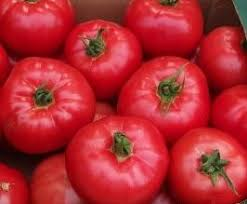 owoce pomidora honey moon