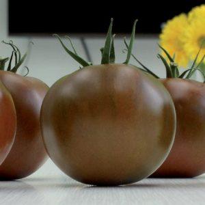 pomidor karaoke