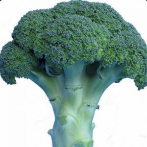 brokuł sirtaki