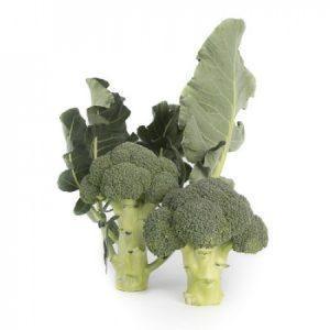 brokuł larsson