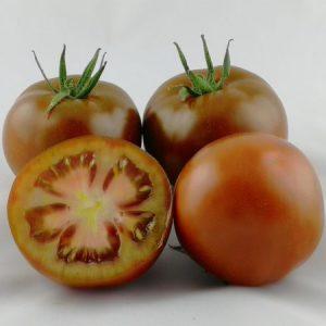 pomidor sacher