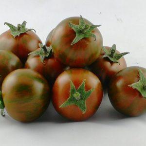 pomidor Tiger