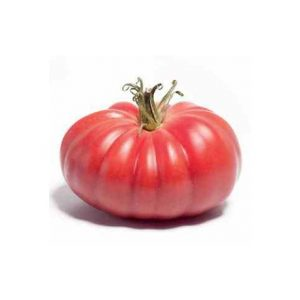 pomidor monterosa